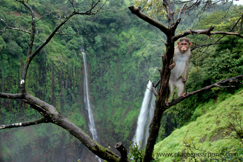 thoseghar_waterfall_satara_monsoon_2