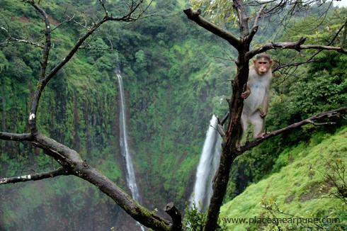thoseghar_waterfall_satara_monsoon_2