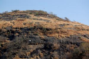 ghorwadeshwar_cave_temple