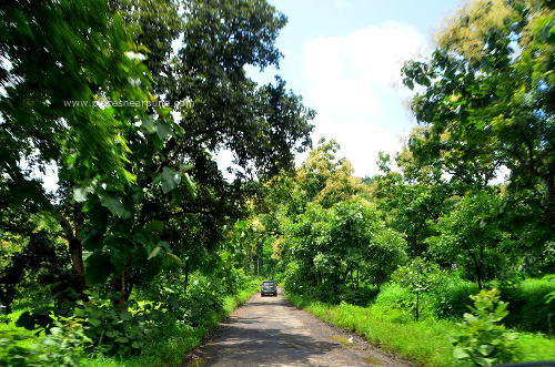 madhe_ghat_waterfall_2.jpg