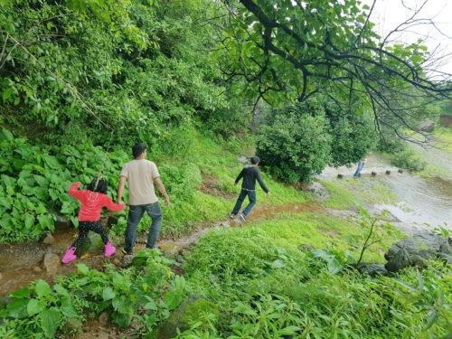 waterfall streams in tamhini