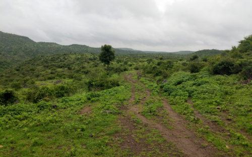 veer dam offroad
